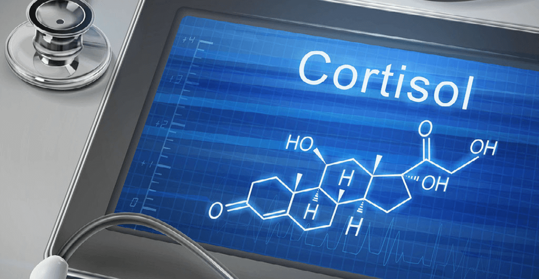 A kortizol hormon