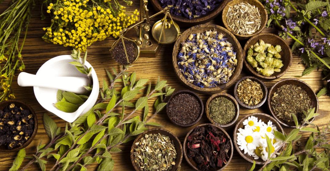 Gyógyító gyógynövények